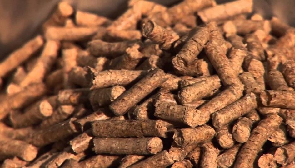 Substitució de calderes per una caldera de biomassa de condensació en el Poliesportiu Municipal