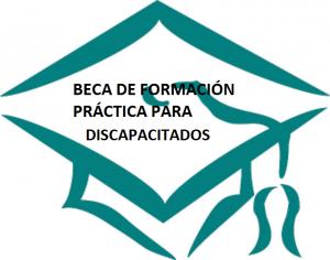 becas_discapacidad